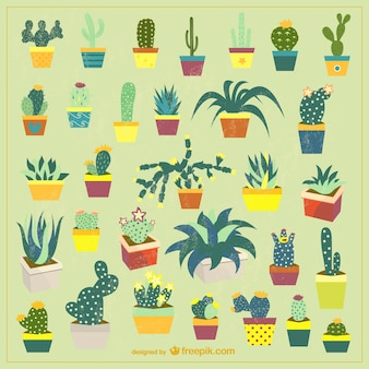 Potted cactus vector set