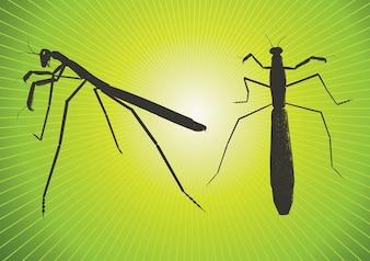 Praying Mantis Vector