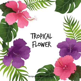 Pretty background of tropical flowers and leaves