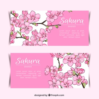 Pretty banners of cherry blossom