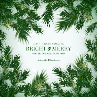 Pretty christmas background with realistic fir leaves