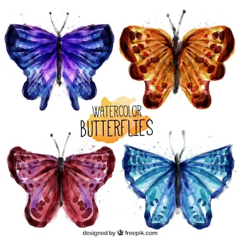 Pretty colored butterflies watercolor