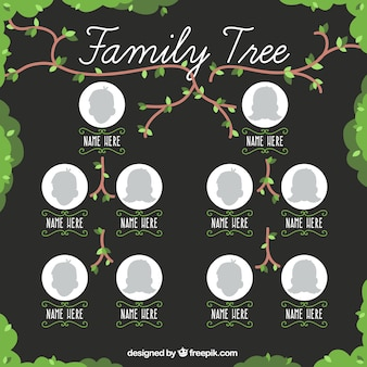 Pretty family tree with branches and leaves