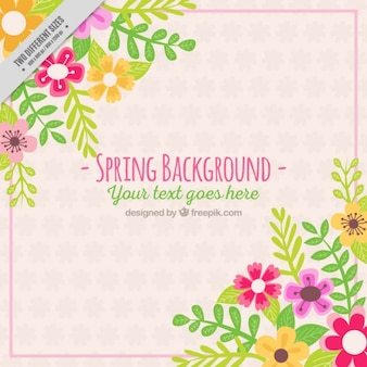 Pretty spring background