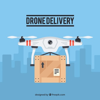 Professional drone delivering in the city