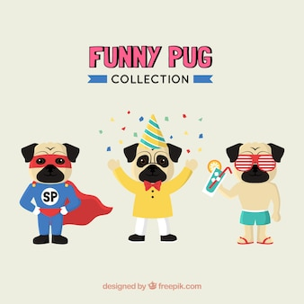 Pug collectionn with funny costumes