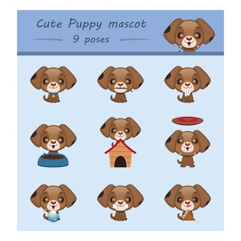 Puppy designs collection