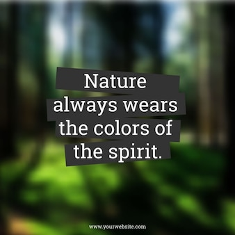 Quote on blurred forest background
