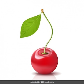 Realistic 3d cherry