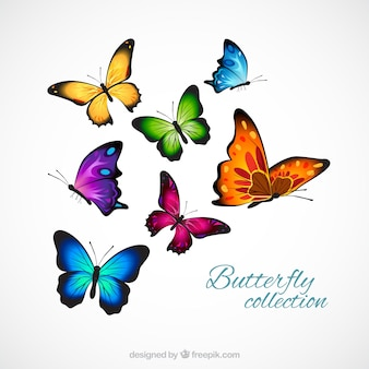 Realistic and colorful butterflies