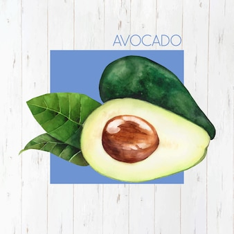 Realistic avocado background