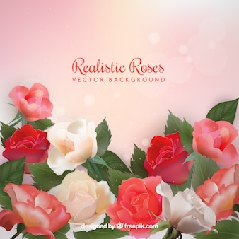 Realistic background of roses with bokeh effect