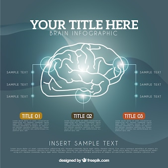 Realistic brain infographic template