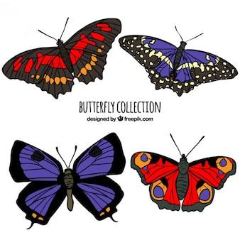 Realistic butterflies in springtime
