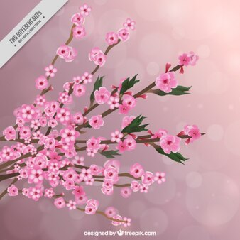 Realistic cherry tree background