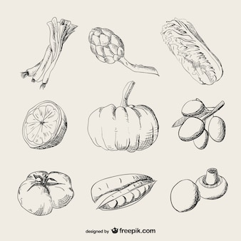 Realistic drawing vegetables