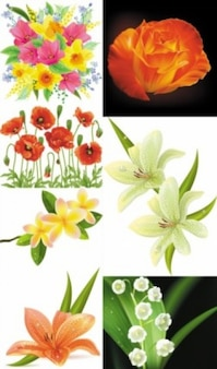 realistic flowers