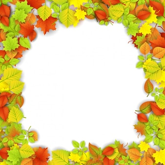 Realistic frame with leaves