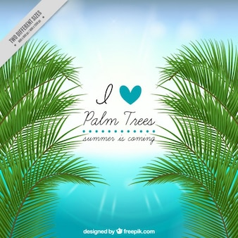 Realistic palm trees background