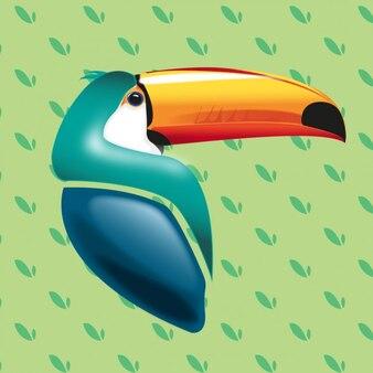 Realistic toucan