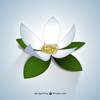 Realistic white flower
