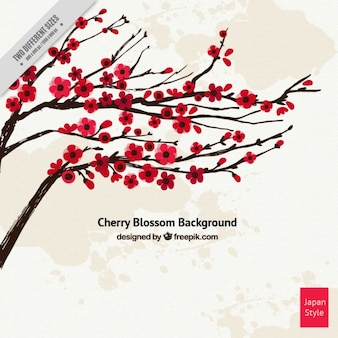 Red cherry blossom background