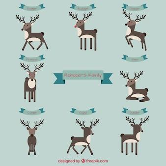 Reindeer's family