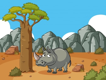 Rhino on the desert field