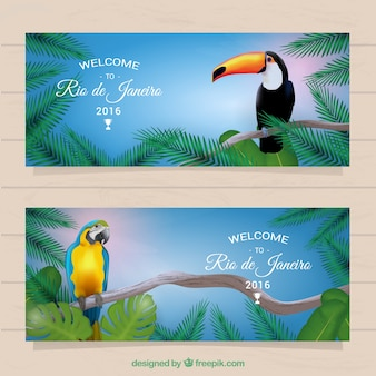 Rio de janeiro banners with tropical birds
