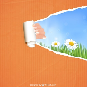 Ripped paper with hand and daisies background