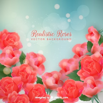 Rose background in realistic design