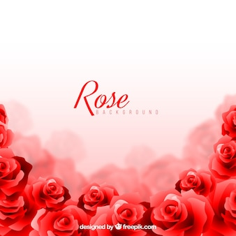Rose background with blurred effect