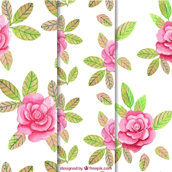 Roses pattern background