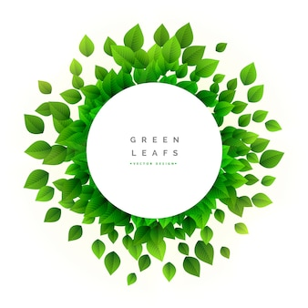 Round green leaves design
