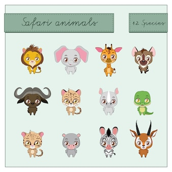 Safari animals collection