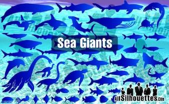 Sea & Ocean Giants