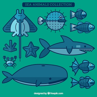 Sea animals collection in flat design