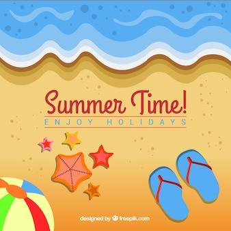 Seashore background with decorative summer elements