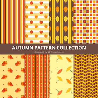 Selection of patterns with autumnal elements