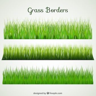 Selection of three grass borders