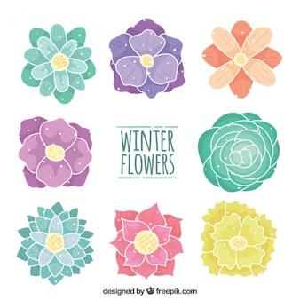Set of beautiful hand-drawn flowers