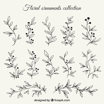 Set of branches with hand drawn leaves