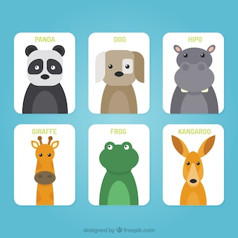 Set of cards with flat animal faces