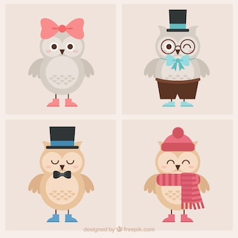 Set of cute owls with clothes and elements