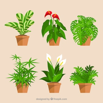 How To Decorate A Flower Pot