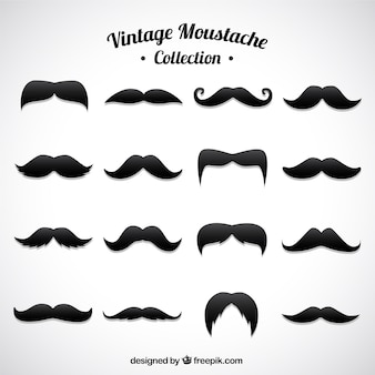 Set of different moustaches in vintage style