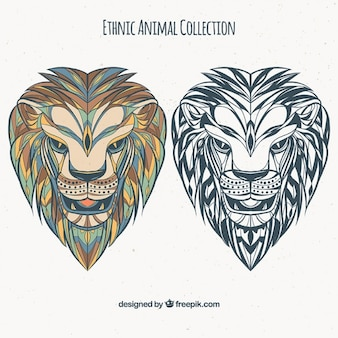 Set of ethnic lions in color and black and white