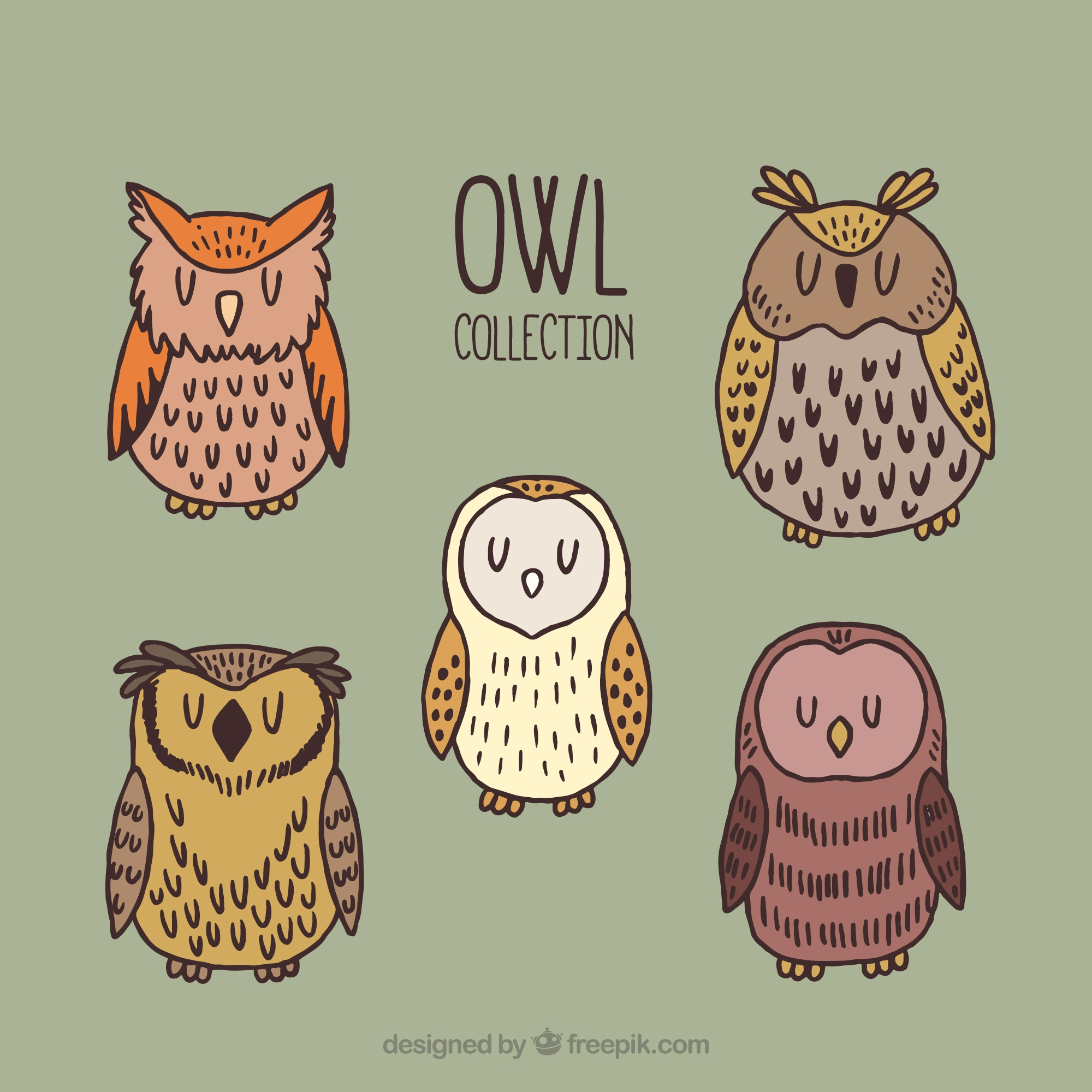 Set of five hand-drawn owls