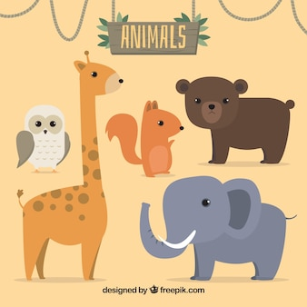Set of five wild animals