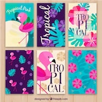 Set of flamenco cards and tropical flowers